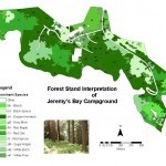 Poster showing Spatial modeling database of forest stands in Kejimkujik National Park and Historic Site