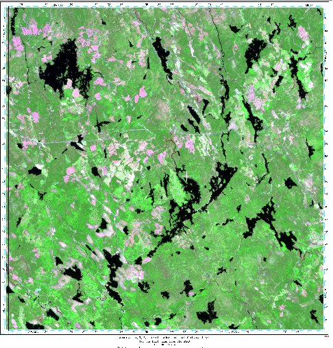 Enhanced LandSAT False Color Composite Image of Trout Lake, Nova Scotia
